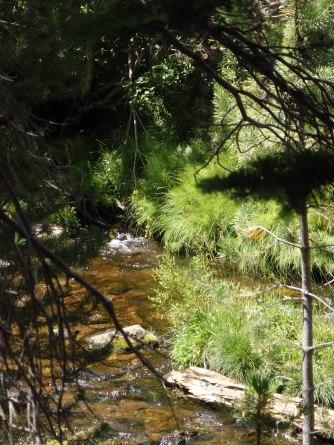 A creek to cross